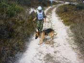 Кам'янецькі собаки знаходять вибухівки, які металошукачу не під силу