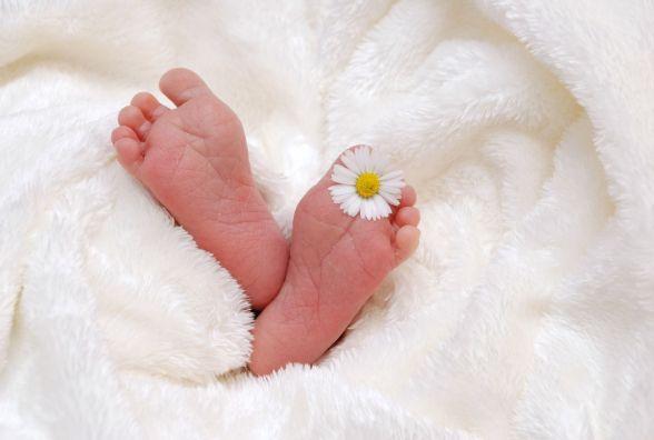 108 немовлят з'явилися на світ у січні в Кам'янці