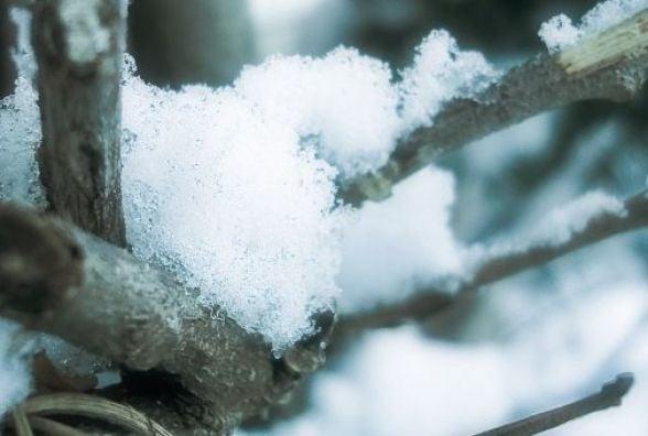 У Кам'янці в суботу прохолодно буде