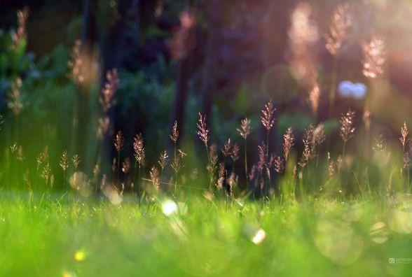 22 березня у Кам'янці обіцяють надзвичайно сонячну погоду