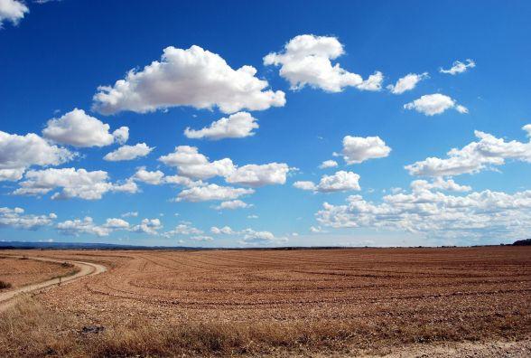 На Кам'янеччині підприємець не сплачує оренду за 100 гектарів землі