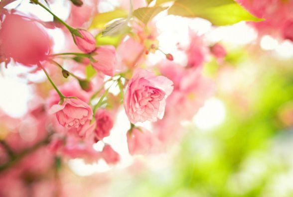Якою погода буде для кам'янчан у понеділок 10 квітня?