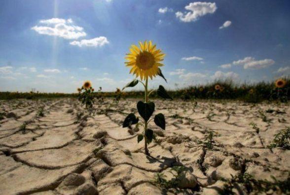 17 червня - Всесвітній день боротьби з опустеленням і посухою