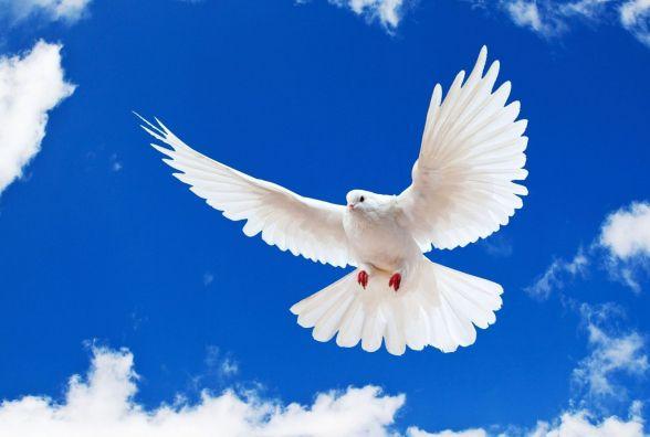 21 вересня - Міжнародний день миру