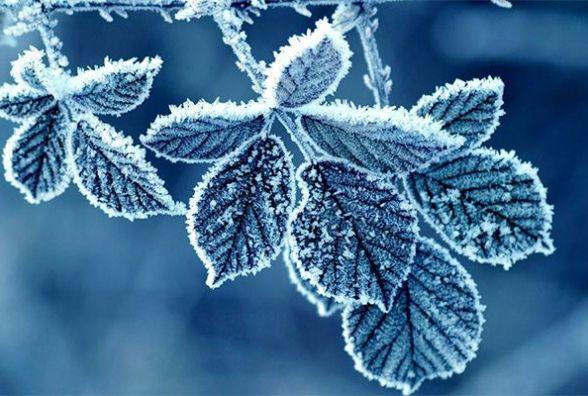 Яку погоду прогнозують у Кам'янці 24 січня?