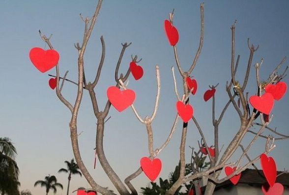 Куди піти на День святого Валентина у Кам'янці?