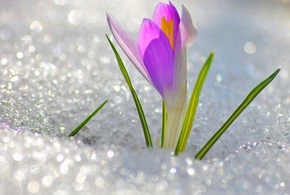 Якою буде погода у Кам'янці-Подільському 2 березня