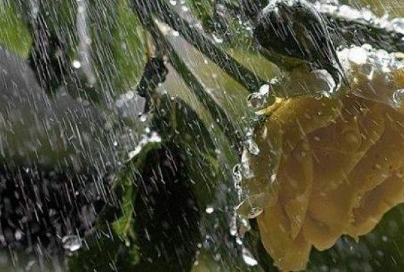 У Кам'янці очікується сильний дощ. Прогноз погоди на 13 березня