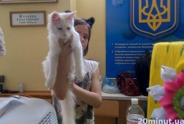 У Кам'янці відбулась виставка котів унікальних порід (ФОТОРЕПОРТАЖ)