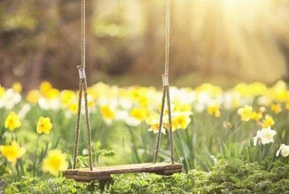 Синоптики обіцяють у Кам'янці 17 травня ясну погоду