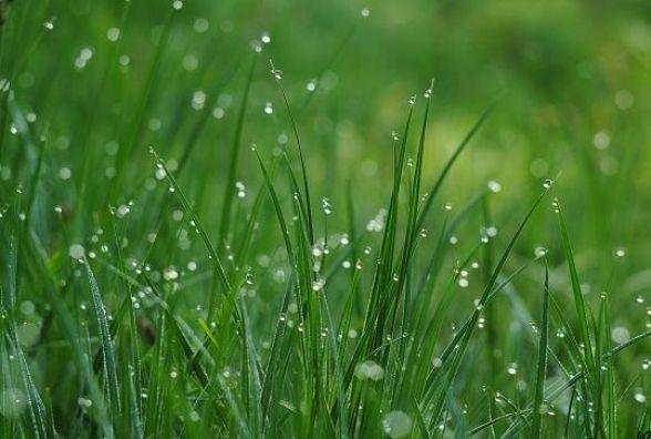 Синоптики прогнозують шквали та грози на вікенд. Погода у Кам'янці 16 та 17 червня