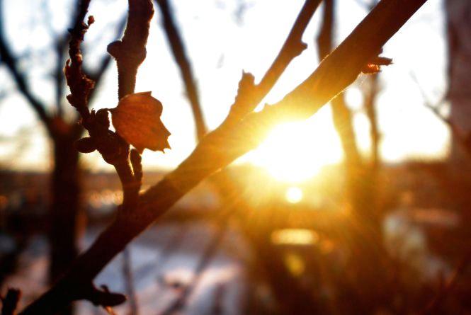 На кам'янчан чекає сонячний понеділок