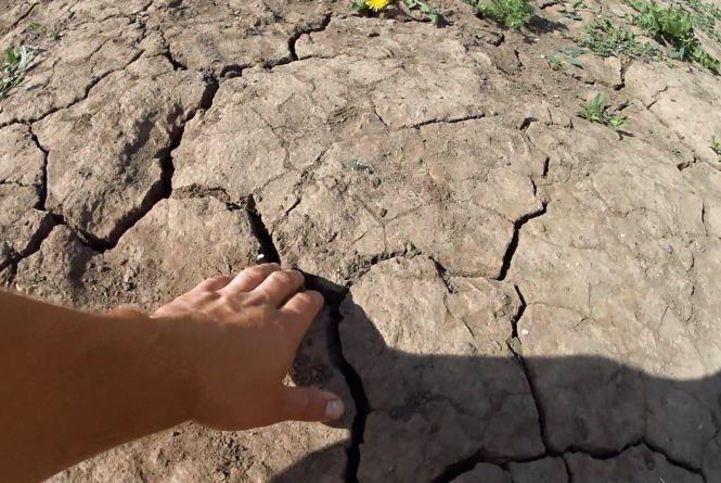На Кам'янеччині незаконно видобували корисні копалини