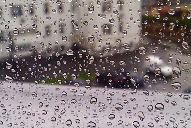 Прогноз погоди у Кам'янці - Подільському - 8 травня