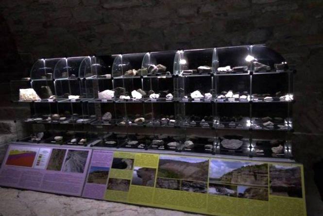 У Кам'янці працює музей палеонтології