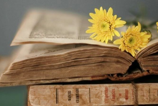 25 травня - День філологів