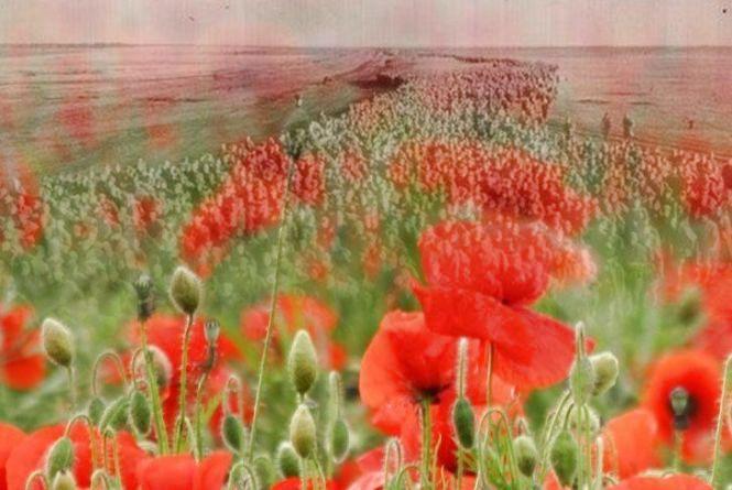 22 червня - День скорботи і вшанування пам'яті жертв війни