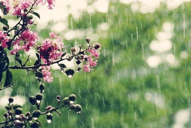 Яку погоду прогнозують кам'янчанам 8 липня?