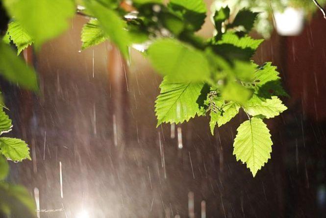 На Кам'янець насуваються дощі: прогноз погоди на 11 липня