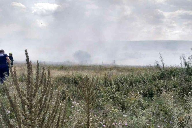 Поблизу Кам'янця зайнялася трава. Горіло 0,3 гектари