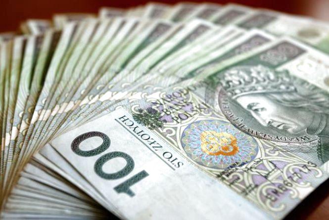 Євро незмінне, а злотий підріс: курс валют від НБУ