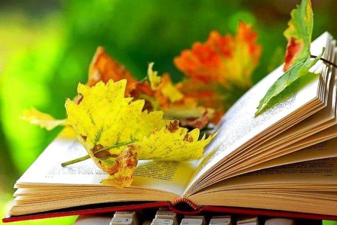Що почитати восени? Кам'янчани діляться книжковими вподобаннями