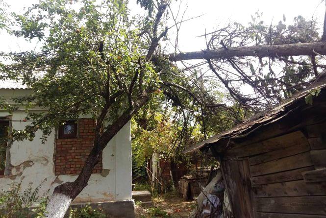 На Кам'янеччині від сильного вітру постраждало 12 населених пунктів