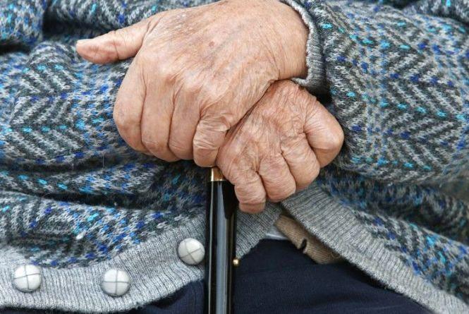 720 доларів, 10 500 гривень та 10 лей: на Кам'янеччині пограбували пенсіонерку