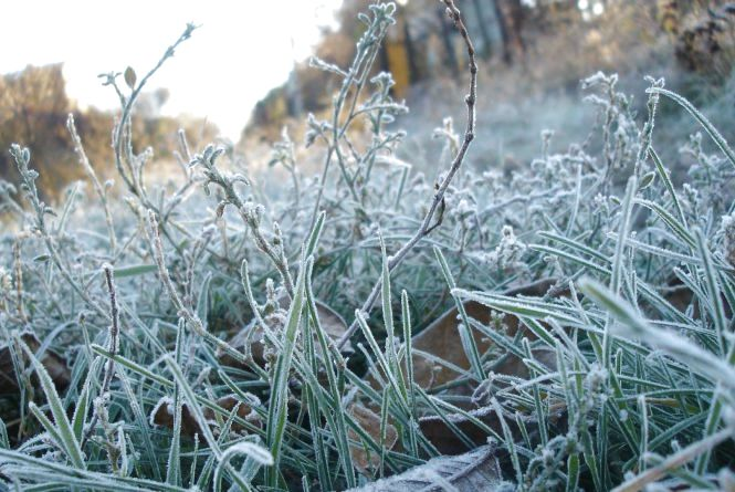 Атмосферний фронт несе до Кам'янця мокрий сніг