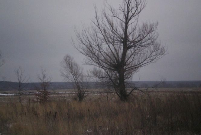 Зима вже близько, хоч і 1 грудня буде в Кам'янці без снігу