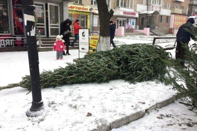 Утилізація ялинок: куди подіти кам'янчанам новорічне дерево?