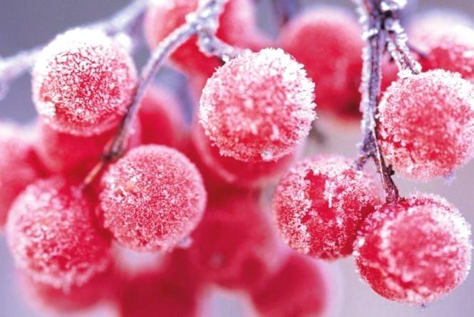 На Маланку й Василя в Україну прийдуть морози