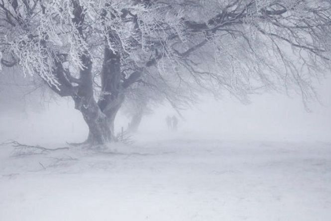 У Кам'янці очікується снігопад. Про погоду на 20 березня