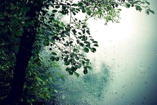 У Кам'янці 15 травня похмуро, але без опадів