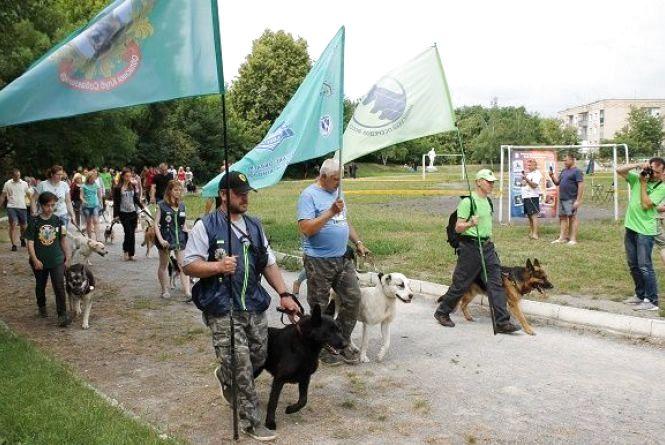 Змагання чотирилапих: яких собак можна було побачити на виставці у Кам'янці? (ФОТОЗВІТ)