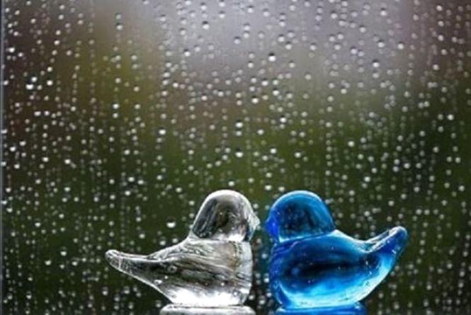 У Кам'янці 7 вересня очікується дощ