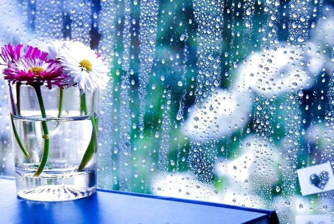 Прогноз погоди у Кам'янці 12 вересня