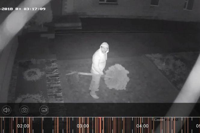 У Кам'янці на відео зафіксували крадіжку зелених насаджень з території ресторану