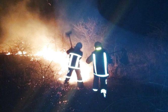 Фотофакт: Вогнеборці Кам'янця рятують довкілля (ОНОВЛЕНО)