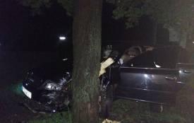 У Кам'янці автомобіль врізався у дерево. Водій зник з місця ДТП (ФОТО)
