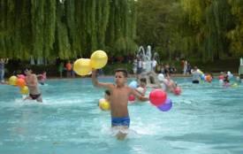Пінне шоу, призи та пікнік: у Кам'янці пройдуть «Ількові забави»
